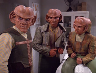Typical Ferengi Males