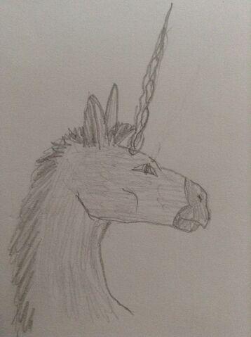 File:DonkeyUnicorn.jpeg