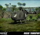 Rogue Transport