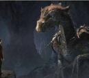 Der Ruf des Drachen