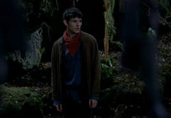 Merlin in Shrine