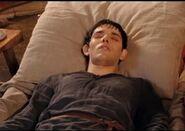 Merlin died