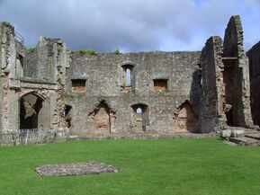 Raglan Castle (6)