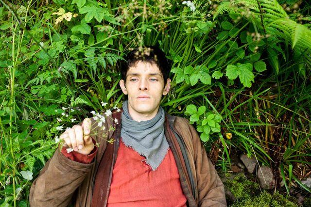 File:Merlin flowers.jpg