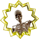 File:Badge-4529-6.png
