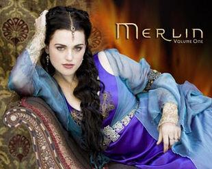 Merlin520