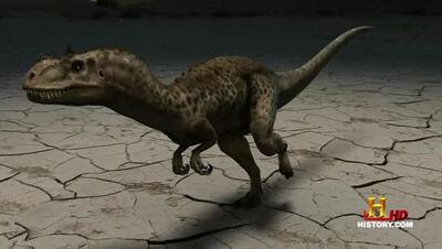 JFC Ceratosaurus