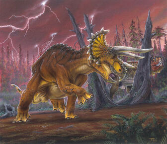 Triceratops-Todd-Marshall