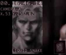 Liquid Snake profile