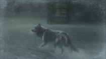 Wolf Pic 3 (Metal Gear Solid 4)