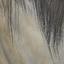 Dhorse hair1