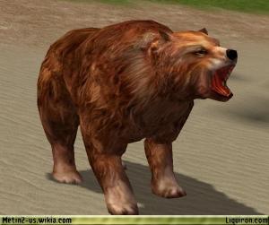 File:Brown Bear 2.jpg