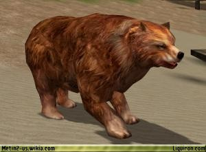 File:Hungry Brown Bear 1.jpg