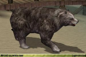 File:Grizzly Bear 2.jpg