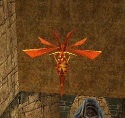 Red Barbed War Wasp