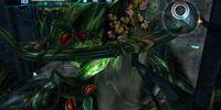 Sector 1 / Biosphere