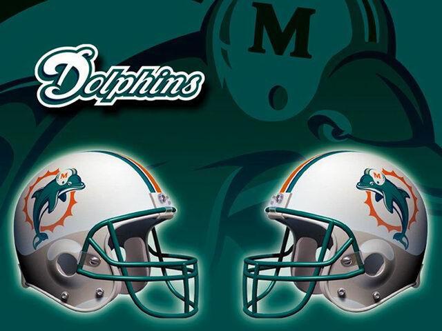 File:MiamiDolphins3.jpg