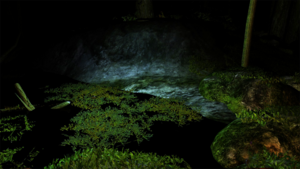 Bio-luminescent algae at night