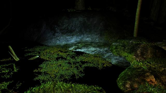 File:Bio-luminescent algae at night.png