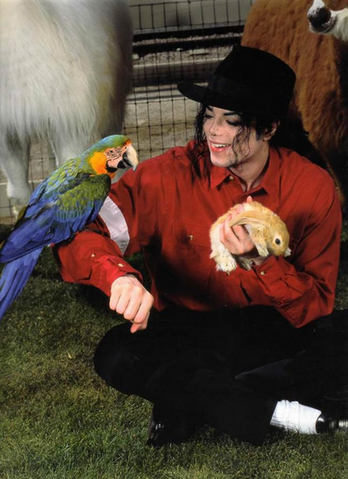 File:Michael Jackson with Pets at Neverland Ranch.png