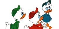 Huey Dewey and Louie/Gallery