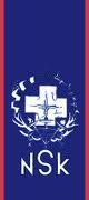 File:Nskflag.png