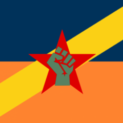 The flag of Nedland from 9 May to 4 July 2015