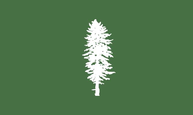 File:Meritan Flag.png