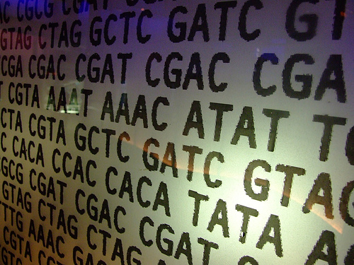 File:Genetic code - If you use it pls leave a comment/fav.jpg