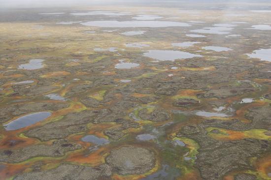 File:Kaninskaya tundra 550x366-1-.jpg