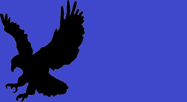 File:Flag o liosiana.png
