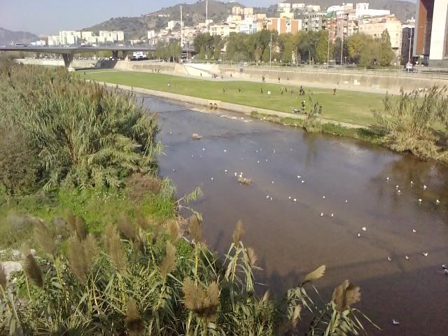 File:Río Besòs.jpg