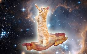 File:CatBacon.png