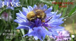 File:Beestamp.jpg