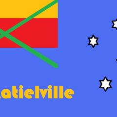 Cockatielville flag that was never used. It is based off of the old proposed national flag.