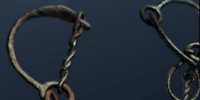 Iron Shackle