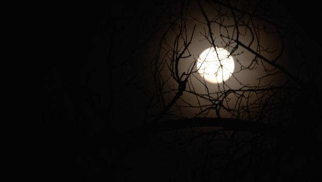 File:Midnight, Texas Screencap Promo 71.png