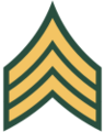 100px-US Army E-5 svg.png