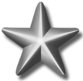 Silver-service-star-3d.png