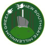 NSMG-logo-small