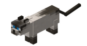 Grey cat minecraft