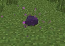File:Endermite looked nearly.jpg