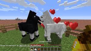 File:Donkey breeding.jpg