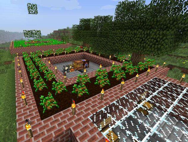File:Illus forestry 2..jpg