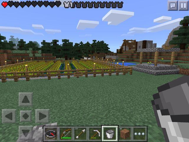 File:Wheat farmcamp.jpg