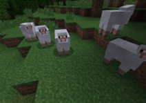 File:A lot Of Sheep.png