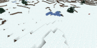 Ice Plains Biome