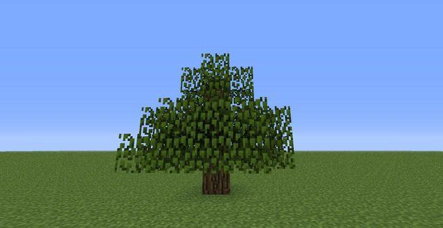 File:Oak Tree.jpg
