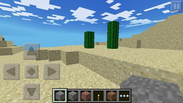 File:Desert biome.jpg