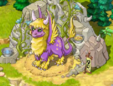 Dragon-grace 23-24